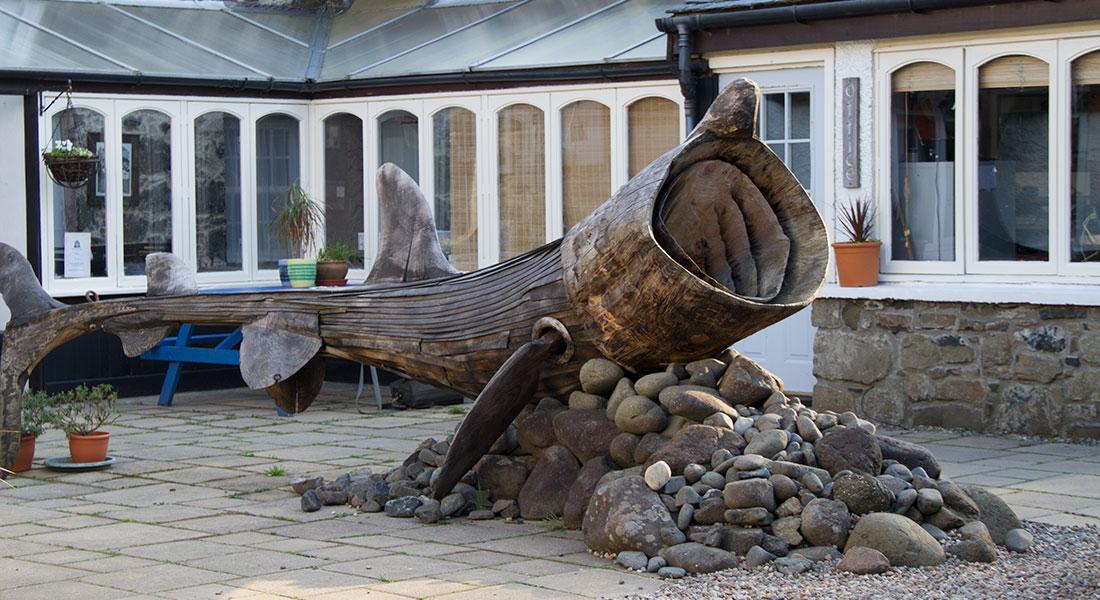 Calgary, Isle of Mull, Courtyard, Shark