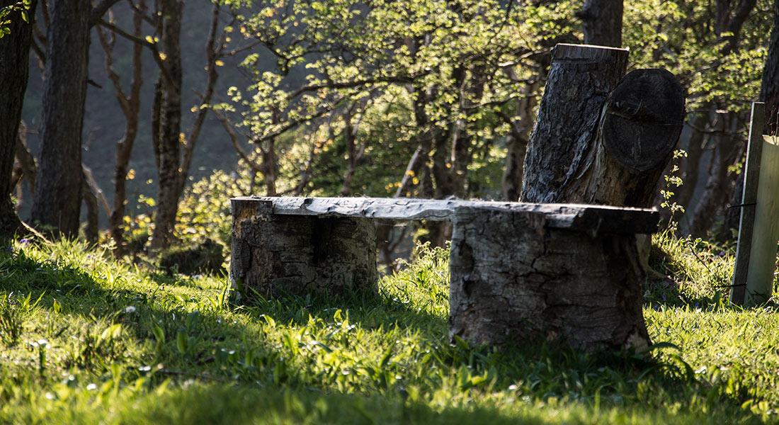 eco-bench