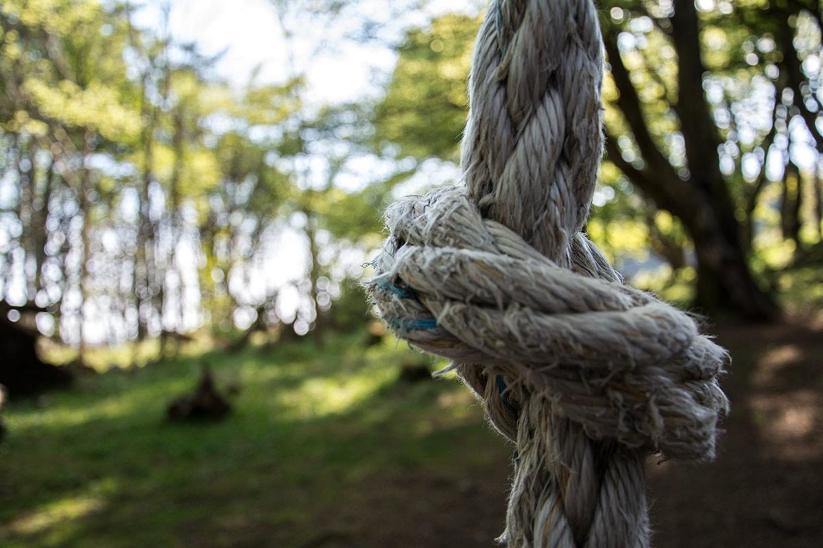 weddings-knot