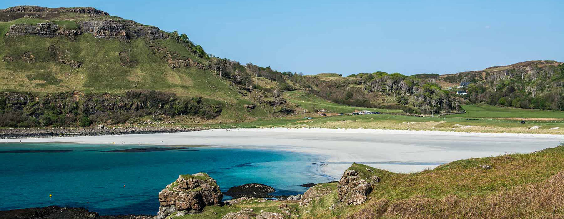 calgary-beach-header700